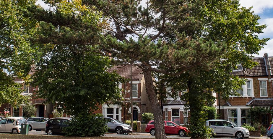 penge-property-and-homes
